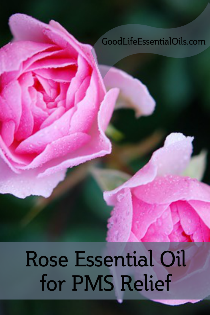 Rose Oil For PMS
