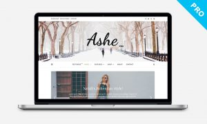 Ashe Pro WordPress Theme